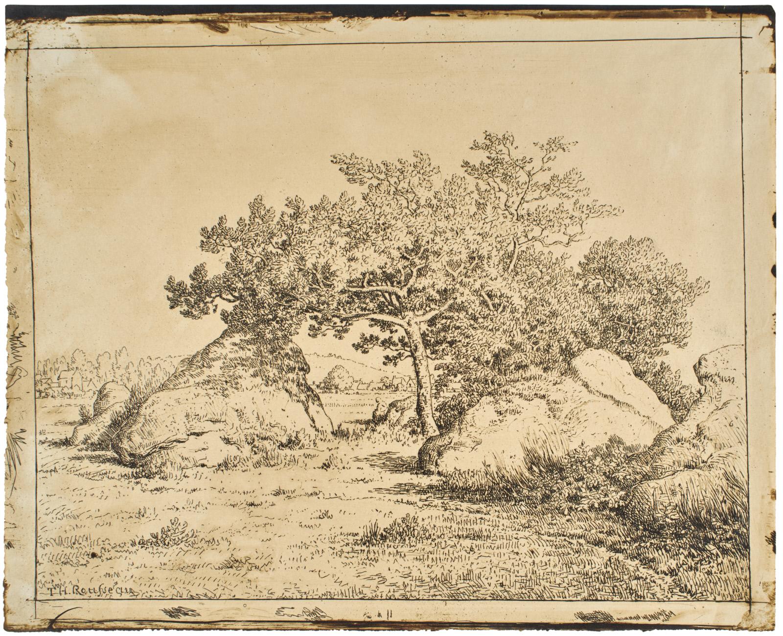 CHERRY TREE AT PLANTE-À-BIAU (LE CERISIER DE LA PLANTEÀ BIAU)