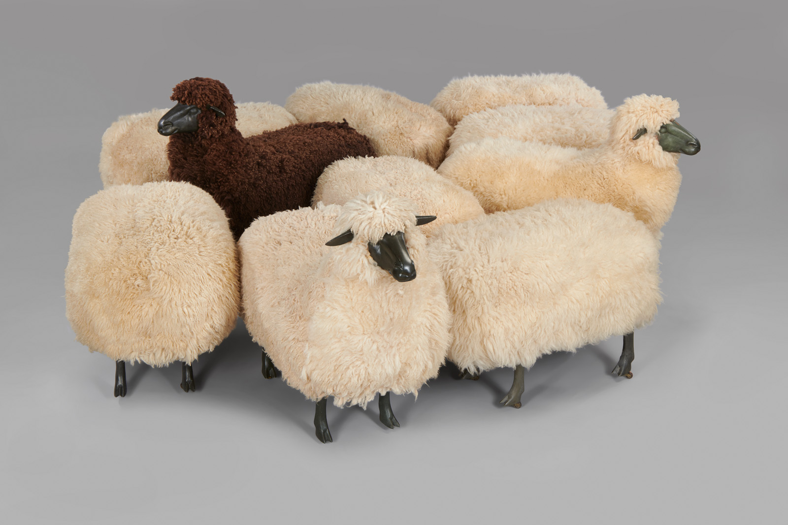 Moutons de Laine